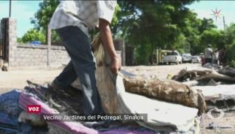 Autoridades Sinaloa Entregan Colchones Hongos Damnificados Inundaciones