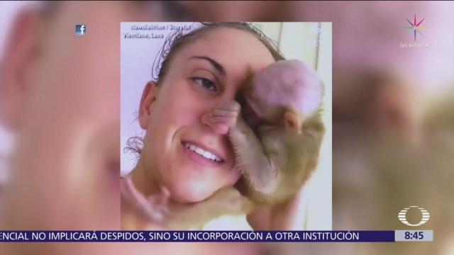 Bebé mono se resiste a soltar a la mujer que lo rescató