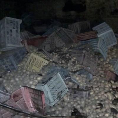 Camión tira toneladas de papas durante accidente automovilístico en la México Cuernavaca