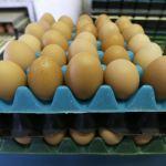 Canadá importará más leche, huevos de EU