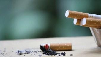 Fumar Exhala Humo 6 Horas IMSS