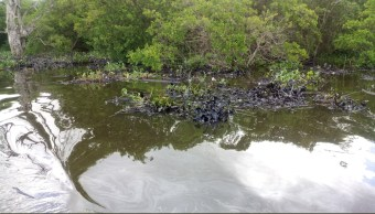 Derrame de petróleo contamina el río Coatzacoalcos