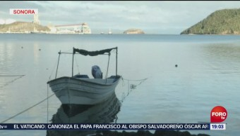 Restablecen Electricidad Zonas Afectadas Sergio Sonora