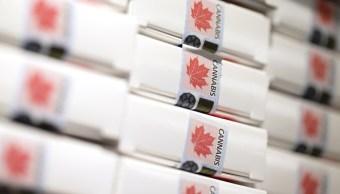 Canadá, el segundo país en legalizar la marihuana