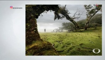 Ganadoras Primer Concurso Fotográfico Instagram Redes