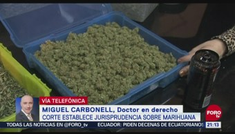 Jurisprudencia Sobre Marihuana Abre Puerta Legalización Miguel Carbonell