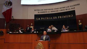 PRI presenta iniciativa para despenalizar cultivo amapola