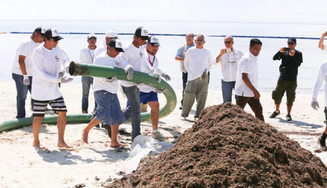 Retiran 213 mil metros cúbicos de sargazo en Quintana Roo
