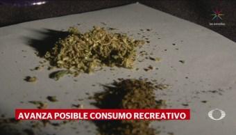 SCJN Establece Jurisprudencia Uso Lúdico Marihuana