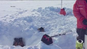 Sonidos Barrera De Hielo Antártida Indican Cambios Climáticos