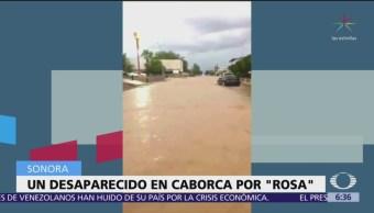 Suspenden clases en 11 municipios de Sonora por Rosa