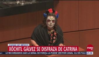 Xóchitl Gálvez Asiste Senado Disfrazada Catrina