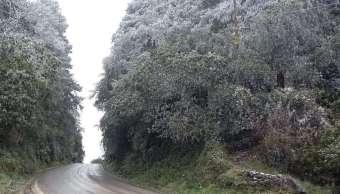 Pronostican caída de nieve o agua nieve en zonas montañosas