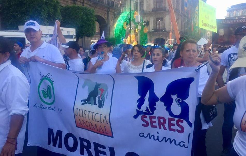 Marchan a favor de los derechos de los animales en CDMX