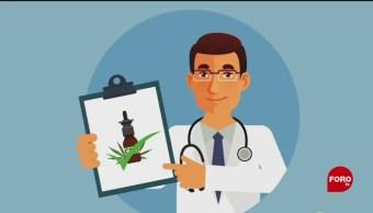 Aumenta El Mercado De Productos De Cannabis México Productos Medicinales De Cannabis, Marihuana , Marihuana Medicinal Cannabidiol