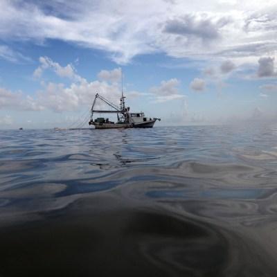 Pescador encontró a bebé flotando en el mar, aún estaba vivo