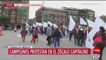 Campesinos protestan en el Zócalo de la CDMX