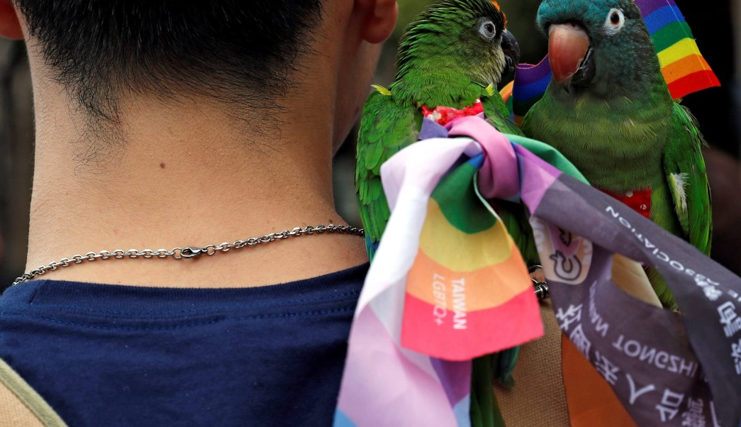 Diputados avalan reformas para dar seguridad social a parejas del mismo sexo