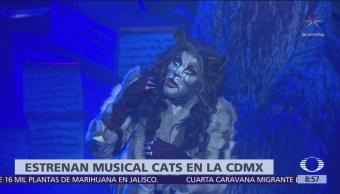Estrenan musical 'Cats' en la CDMX