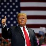 Estados Unidos vota para expresar descontento con Trump: CNN