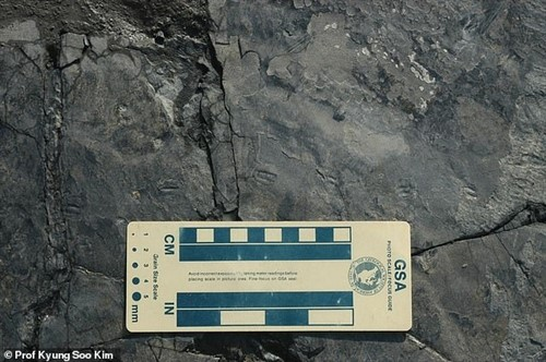 Descubren huellas del dinosaurio más pequeño del mundo