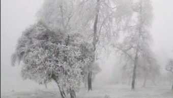 Frente frío 11 mantiene temperaturas cercanas a cero en Chihuahua