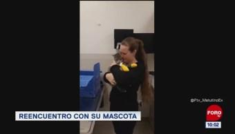 #LoQueVimosEnLaRed: Mujer se reúne con su gato, luego de separase por incendio en California
