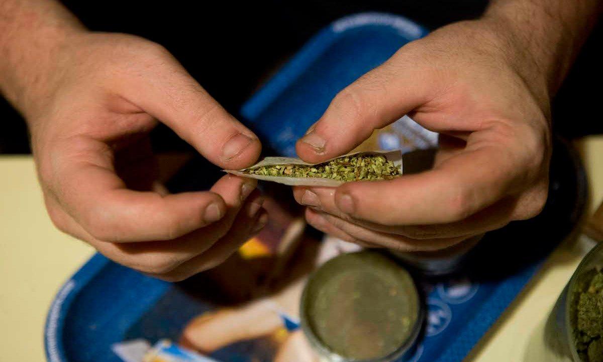 Marihuana Regulación Cuarta Transformación AMLO Sánchez Cordero