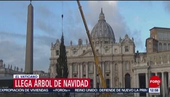 Árbol de Navidad llega al Vaticano