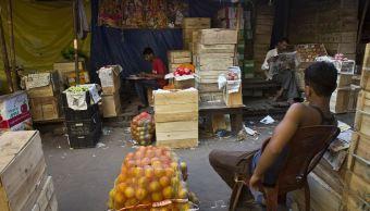 Más del 70 % de frutas y verduras se desperdician en países