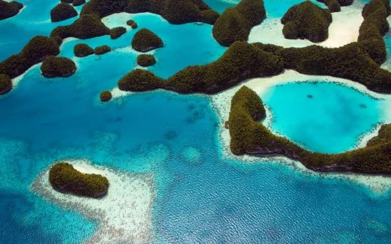 Palau ha prohibido el uso del bloqueador solar en sus playas, pues sus ingredientes dañan los arrecifes de coral, vitales para su economía (Phys.org)
