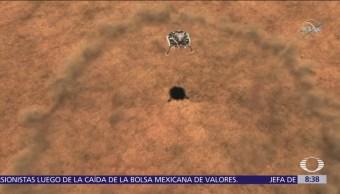 Sonda InSight envía la primera foto de Marte