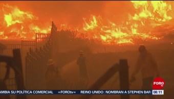 Suman 74 Muertos Incendios Forestales En California Personas Desaparecidas Incendios Forestales California