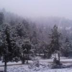 Alertan por lluvias y nevadas, producto del frente frío 17