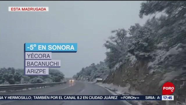 Cae Primera Nevada Temporada En Sonora