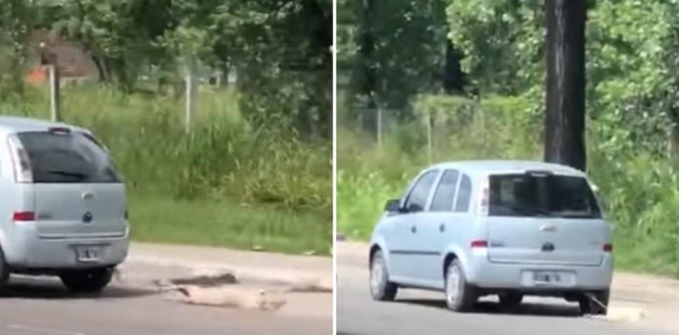 El episodio sucedió en la ciudad de San Miguel Tucumán; autoridades han identificado al conductor (Clarín)