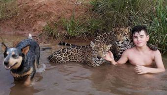 foto-viral-nino-jugando-jaguares-brasil
