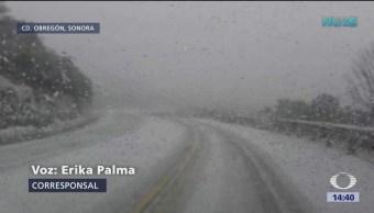 Nevadas afectan el estado de Sonora
