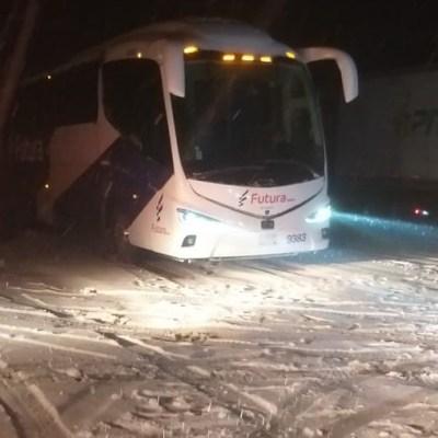 Nevadas e intenso frío afectan 72 municipios de Sonora