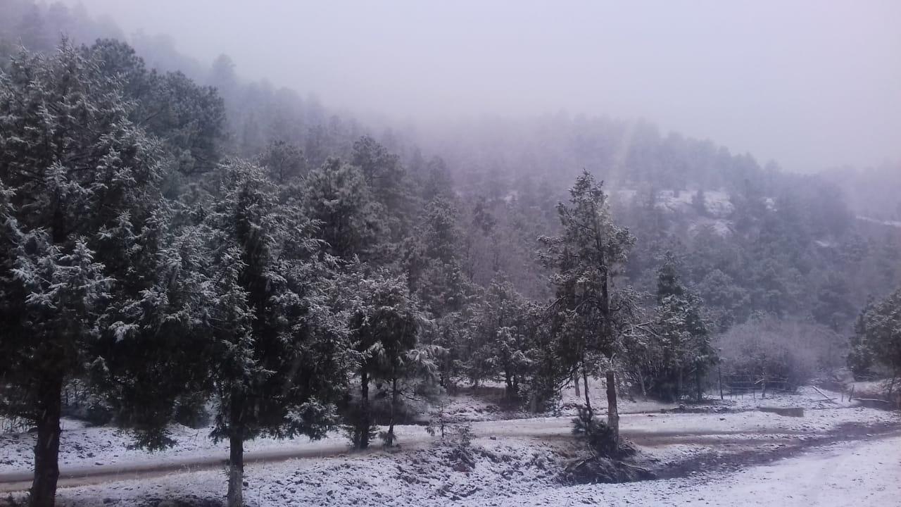 Frente frío 17 provoca nevadas y bajas temperaturas
