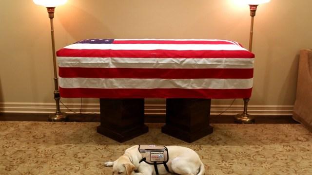 George H.W. Bush hace su viaje final a Washington