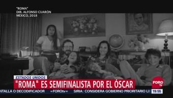 Roma Película Alfonso Cuarón Semifinalista Oscar