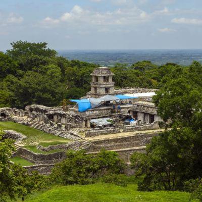 Tren Maya costará entre 120 mil y 150 mil mdp, dice titular de Fonatur