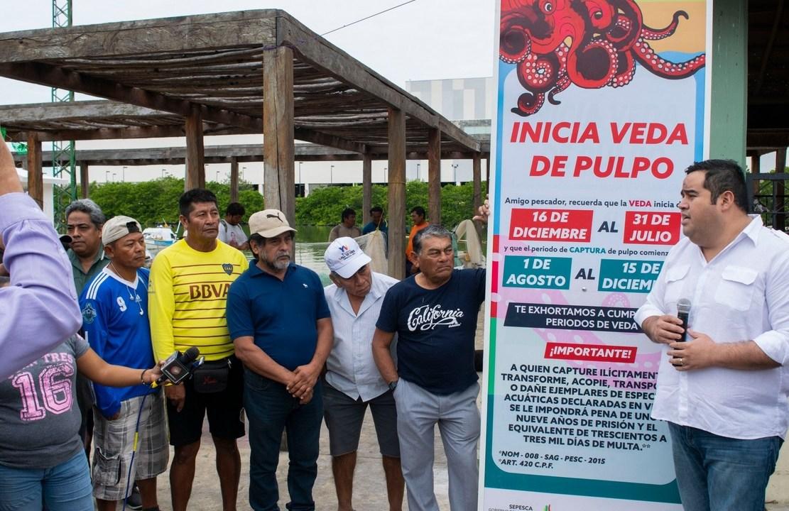 Inicia temporada de veda de pulpo maya en Campeche