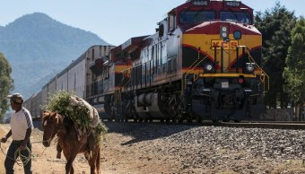 Foto: Un hombre tira de su caballo cerca de un tren detenido por un bloqueo de miembros de la CNTE en Patzcuaro, Michoacán, enero 28 de 2019 (Reuters)