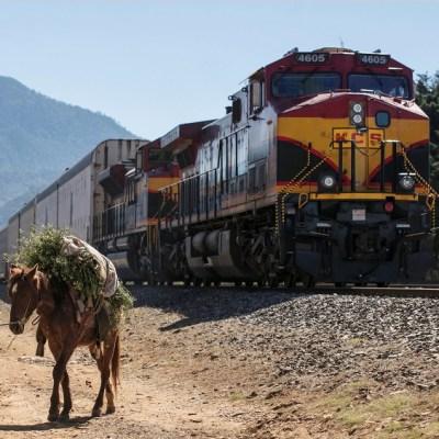 Michoacán: Suman 15 días de bloqueos de la CNTE y 251 trenes detenidos