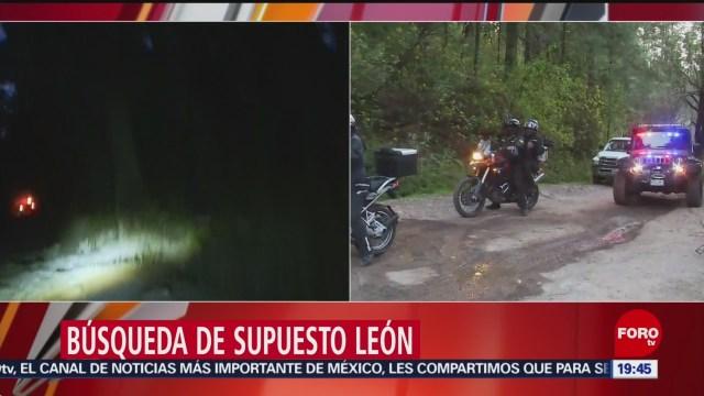 Foto: León En Desierto De Los Leones 31 de Enero 2019