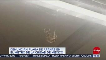 Extra, Extra: Denuncian plaga de arañas en el Metro CDMX