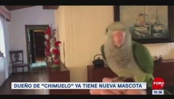"Extra, Extra: Dueño de ""Chimuelo"" ya tiene nueva mascota"
