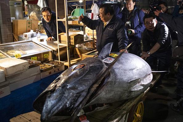 Venden atún aleta azul en 3 millones de dólares en Tokio